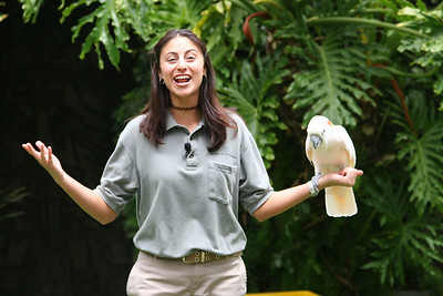 The World of Birds' Show at the Los Angeles Zoo.