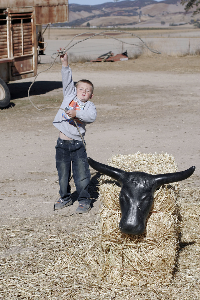 Christopher trying to rope a steer.