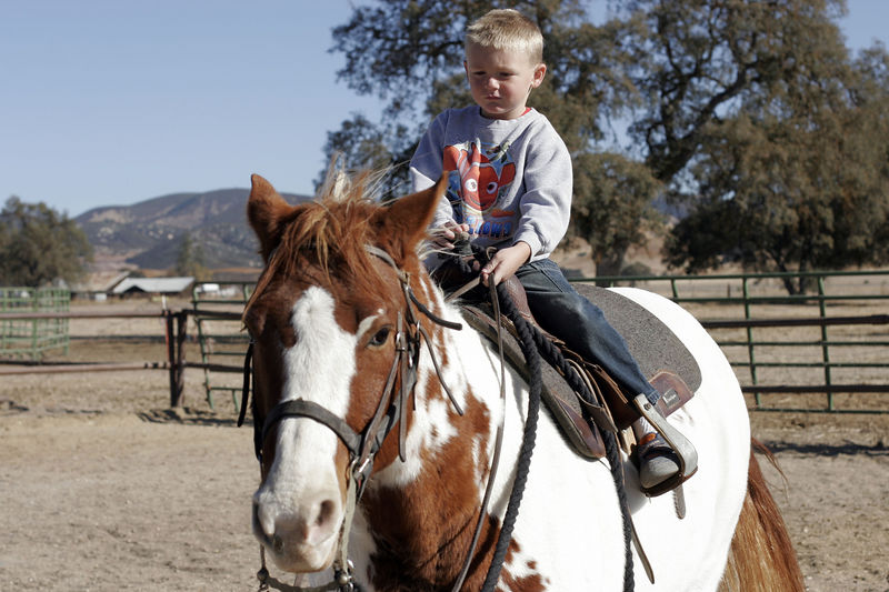 Christopher riding a horse (Joker) during our Thanksgiving visit with Aunt Betsy and Uncle Frank.