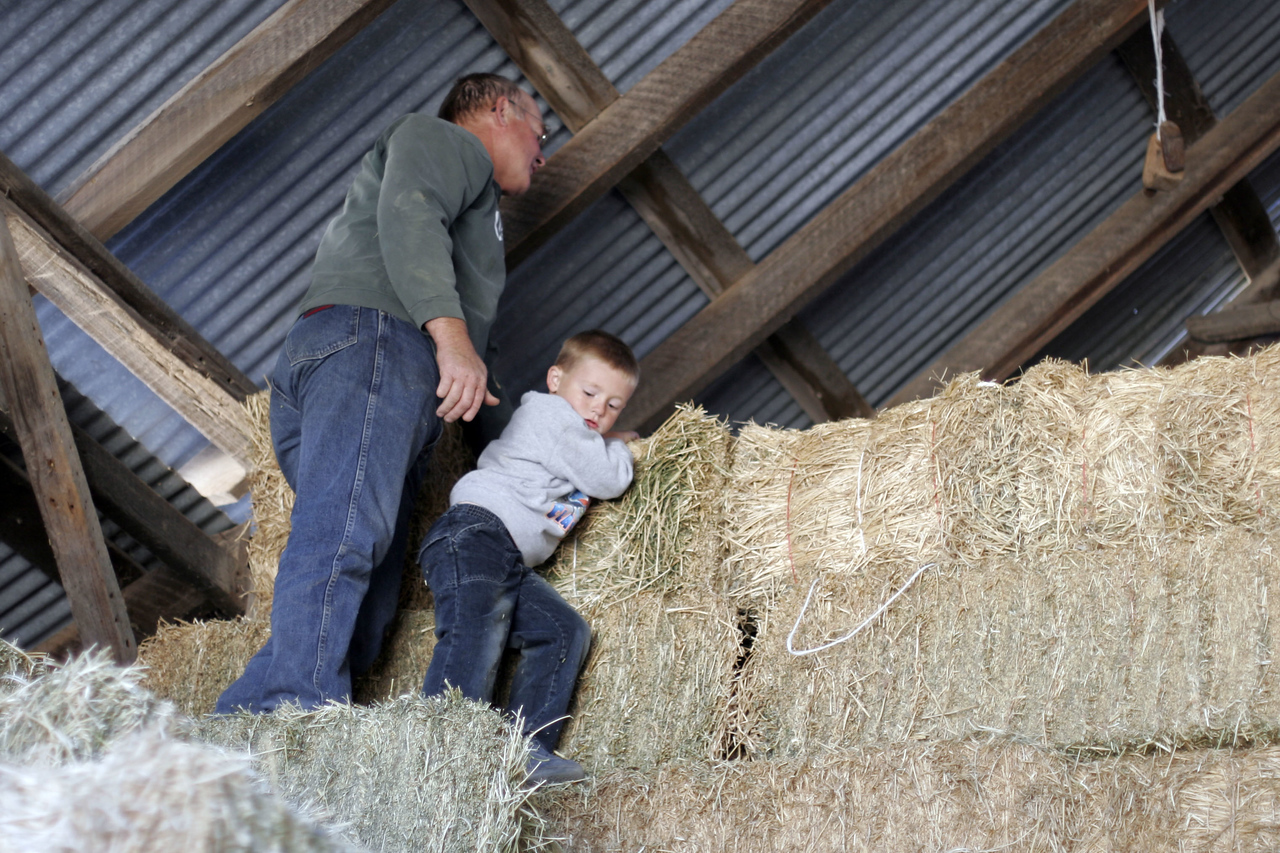 Frank and Christopher on the haystack
