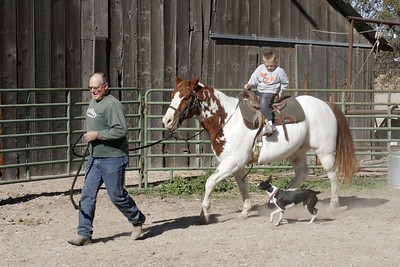 Uncle Frank getting Joker to trot for Christopher during our Thanksgiving visit with Aunt Betsy and Uncle Frank.