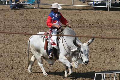 A clown riding a bull at the 2005 Ventura County Fair.
