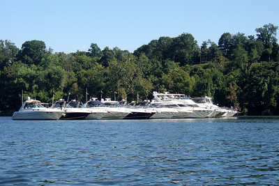 A raft of boats on the Potomac River celebrating Labor Day. (Image taken with FinePix F10 at ISO 200, f7.1, 1/350 sec and 18.1mm)