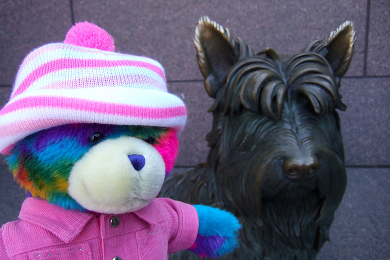 Rainbow Bear at the Franklin Delano Roosevelt Memorial. (Image taken with FinePix F10 at ISO 200, f2.8, 1/200 sec and 8mm)