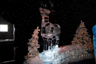 Gaylord National's ICE! (24 Dec 2009) (Image taken by Kathy T. Kane on 24 Dec 2009 with Canon EOS 20D at ISO 400, f4.0, 1/60 sec and 17mm)
