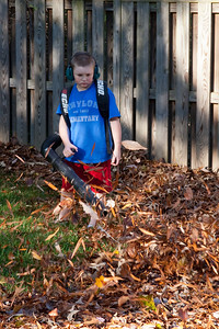 Christopher helping with the leaves in the backyard of our home. (Image taken by Kathy T. Kane on 15 Nov 2009 with Canon EOS 20D at ISO 400, f8.0, 1/200 sec and 70mm)