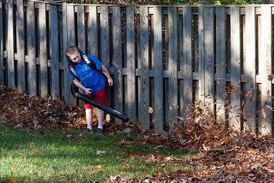 Christopher helping with the leaves in the backyard of our home. (Image taken by Kathy T. Kane on 15 Nov 2009 with Canon EOS 20D at ISO 400, f7.1, 1/160 sec and 70mm)