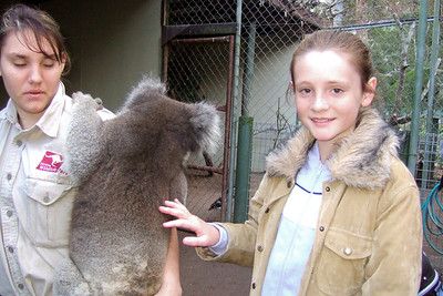 Sydney petting a koala at Nowra Wildlife Park (08 Jul 2009) (Image taken by Kathy T. Kane with FinePix F10 at ISO 800, f2.8, 1/125 sec and 8mm)