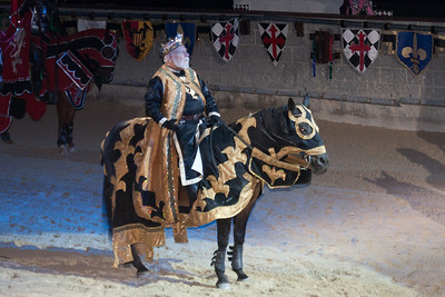 We enjoyed an 11th century-style dinner and show at Medieval Times (Image taken by Patrick R. Kane on 29 Aug 2010 with Canon EOS 20D at ISO 800, f4.5, 1/60 sec and 70mm)