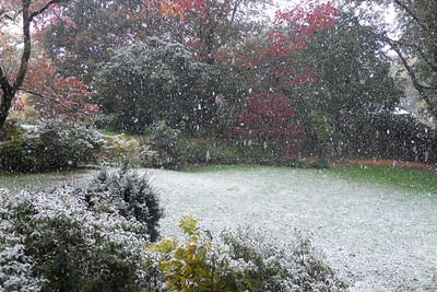 A light dusting of snow in late October (Image taken by Patrick R. Kane on 29 Oct 2011 with COOLPIX S570 at ISO 400, f2.7, 1/200 sec and 5mm)