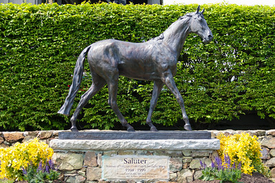 A statue of Saluter, winner of Virginia Gold Cup 6 straight years, 1994-1999. The 86th running of the Virginia Gold Cup steeplechase race at Great Meadow in The Plains, Virginia (Image taken by Patrick R. Kane on 07 May 2011 with Canon EOS-1D Mark II at ISO 400, f3.2, 1/1250 sec and 70mm)