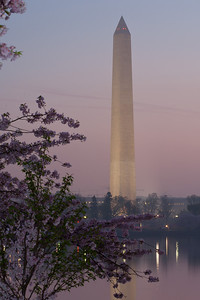 The Washington Monument and cherry blossoms at sunrise. This year's National Cherry Blossom Festival honors the 100-year anniversary of the gift of trees (Image taken by Patrick R. Kane on 23 Mar 2012 with Canon EOS 5D at ISO 200, f22.0, 1/8 sec and 123mm)