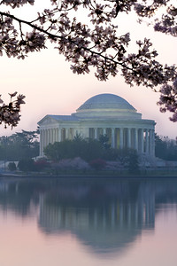 The Thomas Jefferson Memorial and cherry blossoms at sunrise. This year's National Cherry Blossom Festival honors the 100-year anniversary of the gift of trees (Image taken by Patrick R. Kane on 23 Mar 2012 with Canon EOS 5D at ISO 100, f22.0, 1/3.2 sec and 123mm)