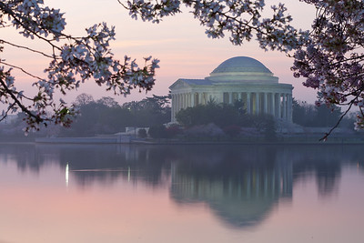 The Thomas Jefferson Memorial and cherry blossoms at sunrise. This year's National Cherry Blossom Festival honors the 100-year anniversary of the gift of trees (Image taken by Patrick R. Kane on 23 Mar 2012 with Canon EOS 5D at ISO 100, f22.0, 1/3.2 sec and 85mm)