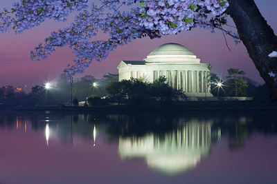 The Thomas Jefferson Memorial and its reflection on the Tidal Basin at sunrise. This year's National Cherry Blossom Festival honors the 100-year anniversary of the gift of trees (Image taken by Patrick R. Kane on 23 Mar 2012 with Canon EOS 5D at ISO 200, f22.0, 1/13 sec and 88mm)