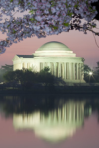 The Thomas Jefferson Memorial and its reflection on the Tidal Basin at sunrise. This year's National Cherry Blossom Festival honors the 100-year anniversary of the gift of trees (Image taken by Patrick R. Kane on 23 Mar 2012 with Canon EOS 5D at ISO 200, f22.0, 1/13 sec and 110mm)