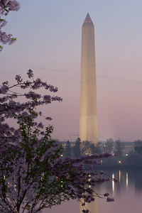 The Washington Monument and cherry blossoms at sunrise. This year's National Cherry Blossom Festival honors the 100-year anniversary of the gift of trees (Image taken by Patrick R. Kane on 23 Mar 2012 with Canon EOS 5D at ISO 200, f22.0, 1/13 sec and 123mm)