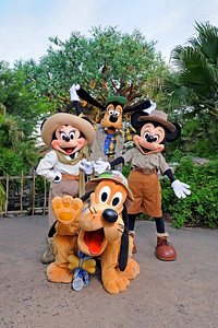Goofy, Mickey Mouse, Minnie Mouse and Pluto in front of the Tree of Life at Disney's Animal Kingdom