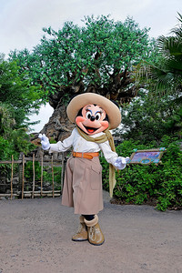 Minnie Mouse in front of the Tree of Life at Disney's Animal Kingdom