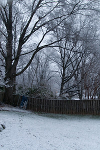 A light dusting of snow in early January (Image taken by Sydney J. Kane on 09 Jan 2012 with Canon EOS 20D at ISO 800, f2.8, 1/30 sec and 17mm)