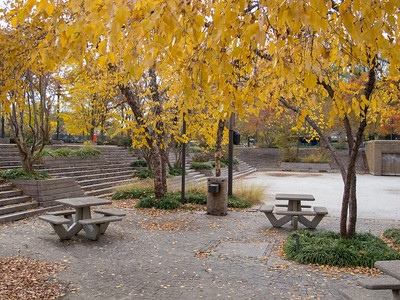 Pershing Park (Image taken by Sydney J. Kane on 12 Nov 2012 with Canon PowerShot G12 at ISO 0, f3.2, 1/100 sec and 8.1mm)