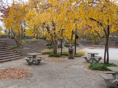 Pershing Park (Image taken by Sydney J. Kane on 12 Nov 2012 with Canon PowerShot G12 at ISO 0, f3.2, 1/125 sec and 8.1mm)