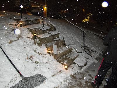 Front Steps (02 Jan 2014)