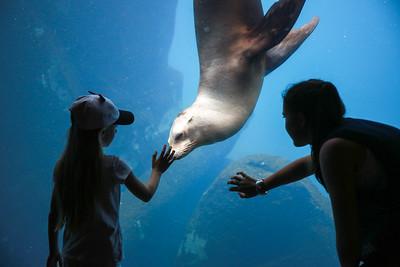 National Zoo (27 Jun 2016)
