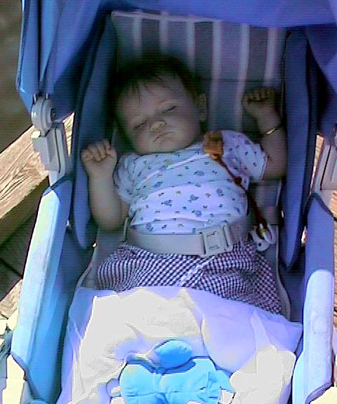 Sydney Jean Kane taking a nap on the Potomac River waterfront in Georgetown.