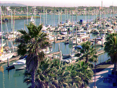 Boats in Ventura Harbor