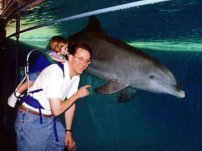This dolphin came over to visit Sydney and Pat at the National Aquarium in Baltimore.