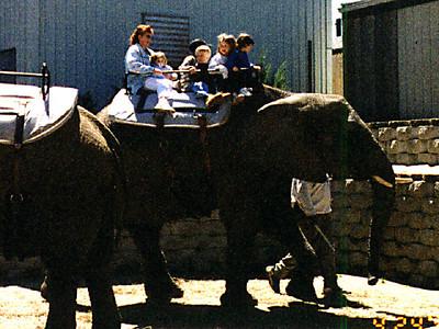 Kathy and Sydney riding an elephant at the Philadelphia Zoo.