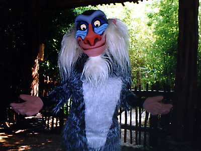 Rafiki, the wise old mandrill from the Lion King.