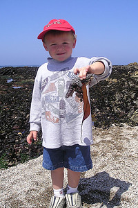 Christopher with a starfish at the tide pools in Corallina Cove at Montaña de Oro State Park. The kids didn't mind holding the starfish and hermit crabs, but they didn't want to get next to any of the regular crabs :-)