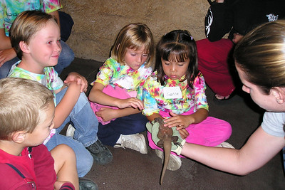 Lauren is showing a lizard to Sydney Kane, Sierra Moore and their First Baptist Day School Kindergarten class during their overnight field trip to the Santa Barbara Zoo. The zoo is now closed and we're getting a behind the scenes look at an exhibit where they have insects and reptiles.