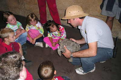 Tom is showing a tortoise to the First Baptist Day School Kindergarten class during their overnight field trip to the Santa Barbara Zoo. The zoo is now closed and we're getting a behind the scenes look at an exhibit where they have insects and reptiles.