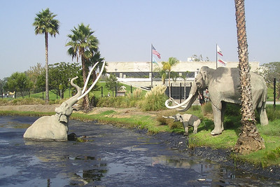 A wooly mammoth family in front of the Page Museum at the La Brea tar pits.