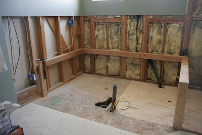 The master bath is starting to come back together, with the rotted floor replaced and the framing for the tub starting to go in.
