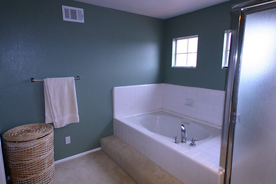 The master bath wasn't anything special and since the shower's tiles were starting to crack, we decided everything had to go.