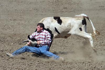 Steer wrestling at the 2005 Ventura County Fair.