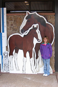 Sydney seeing how she measures up to a Clydesdale at the Anheuser-Busch brewery in Fort Collins.