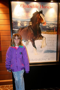 A visit to its Clydesdale Hamlet at the Anheuser-Busch brewery in Fort Collins is exactly what Sydney had been waiting for.