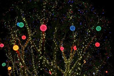 Disneyland holiday lights.