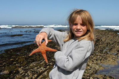Sydney holding an ochre starfish in the Corallina Cove tide pool at Montaña de Oro State Park.