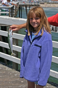 Sydney caught a Pacific mackerel using a multi-hook Lucky Lura-type rigging off the Pismo Beach Pier.