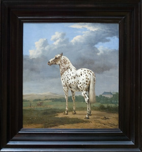 """The """"Piebald"""" Horse, circa 1650-54 by Paulus Potter. Sydney's favorite painting. The Getty Center."""