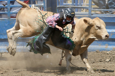 A very young bull rider getting tossed from his bull at the 2006 Ventura County Fair