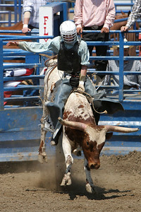 A very young bull rider trying to beat the buzzer at the 2006 Ventura County Fair
