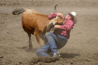 Steer wrestling at the 2006 Ventura County Fair