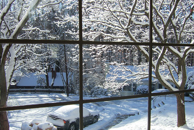 Looking out our front window to the right after our first snow of the year. (Image taken with FinePix F10 at ISO 80, f4.5, 1/340 sec and 8mm)